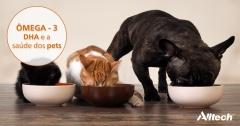 All-G Rich: aliado na alimentação de cães e gatos