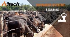 Inverno: veja 9 dicas para o manejo do gado de corte