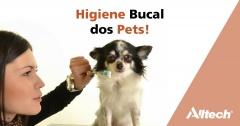 Como combater o mau hálito nos pets?
