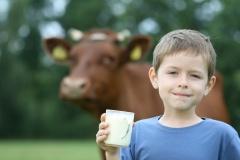 Benefício para animais e humanos