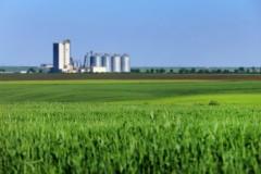 Dia do Cooperativismo Internacional: a força da união no agronegócio
