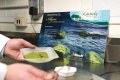 algae-research-04.jpg
